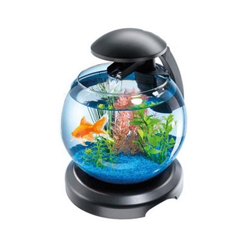 ... Shop / Aquatic / Aquariums / Tetra Mini Cascade Globe Aquarium 6.8L